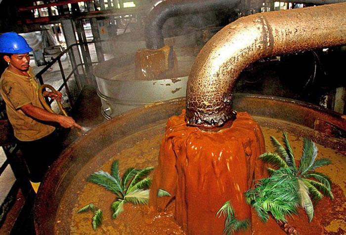 Техническое пальмовое масло