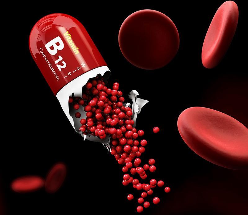 Синтез гемоглобина